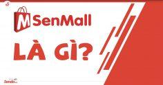 SenMall là gì? Những ưu đãi đặc biệt chỉ áp dụng cho SenMall?